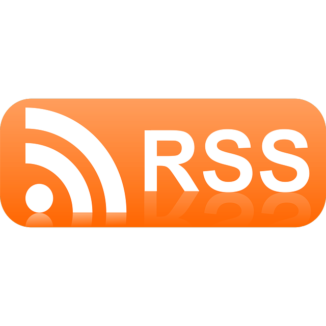 logo-flux-rss